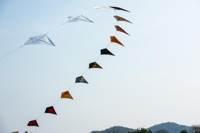 Kite Festival-7